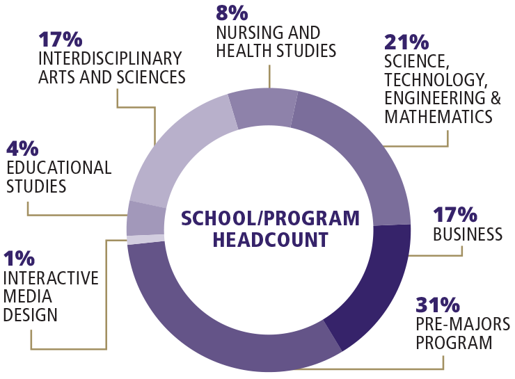 Headcount pie chart by school