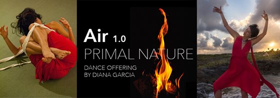 Banner image for Air 1.0 featuring Diana Garcia Snyder
