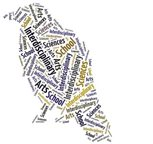 IAS word cloud crow
