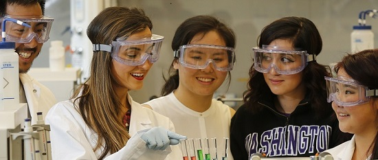 UW Bothell chemistry students in lab