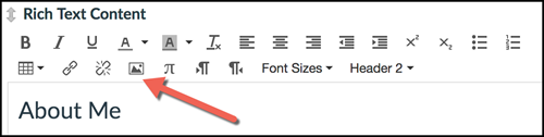 Embed Image icon in Rich Text Editor