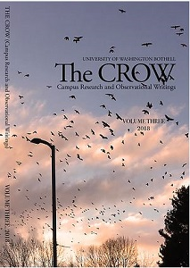 Cover of the Crow journal: crows flying with sunset in back
