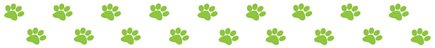 Green pawprints border