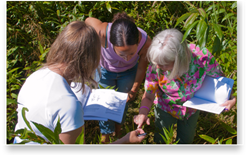 students examining a plant closely standing in the wetlands