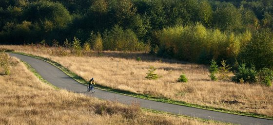 person riding bike along burke gilman trail that runs through campus