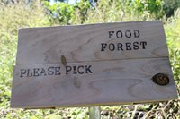 sign that says food forest please pick