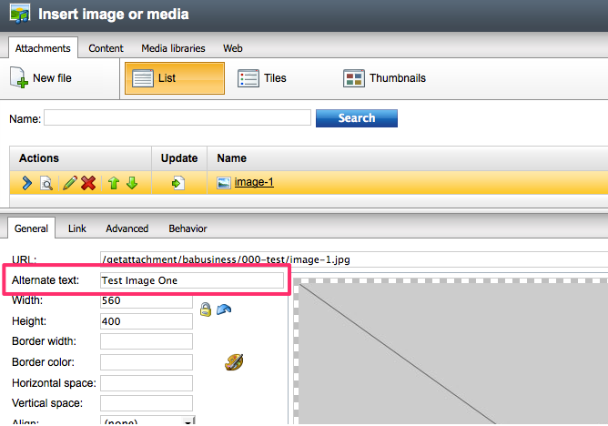 Image editing area with alt text field highlighted